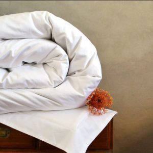 Egyptian Cotton Duvet Covers